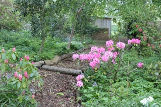 Samanth Jane Garden Design