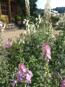 Planting in the Herbaceous Borders