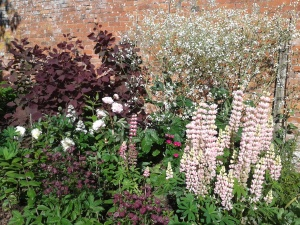 Nice planting in the Cut Flower Border
