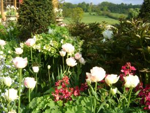 A close up Herbaceous Borders Tulips and Castle in Back