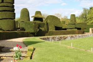 The topiary - nearly 100 years old